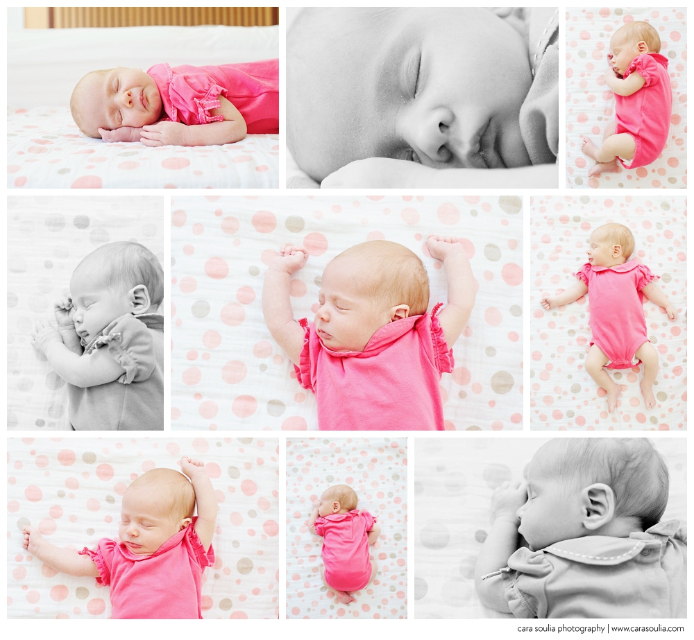 welcome elena | Needham newborn photographer