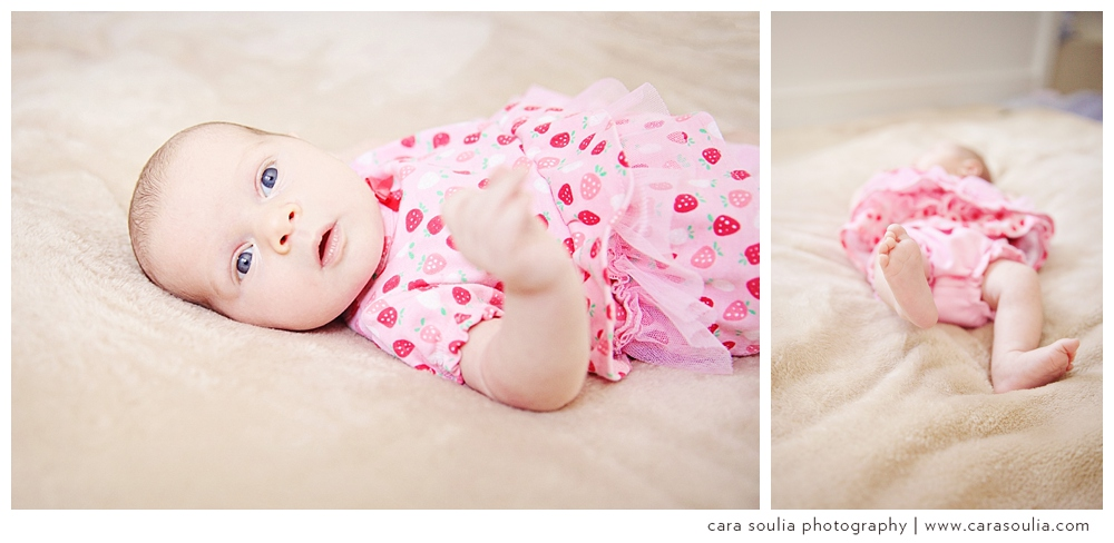 needham newborn photographer
