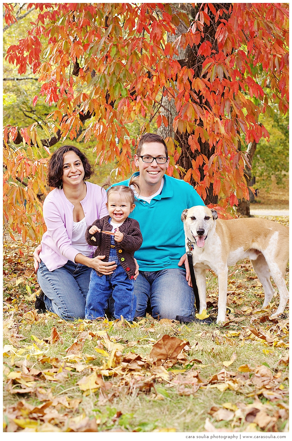 beautiful-needham-family-photographer