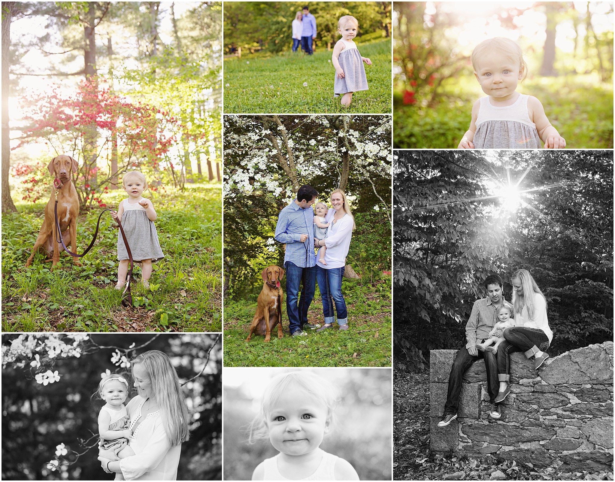 nadya & leelu | boston family portrait photographer