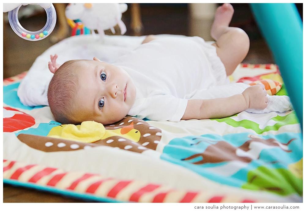 baby portraits jamaica plain