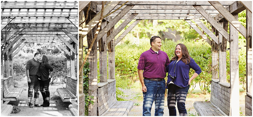 couples portraits wellesley ma