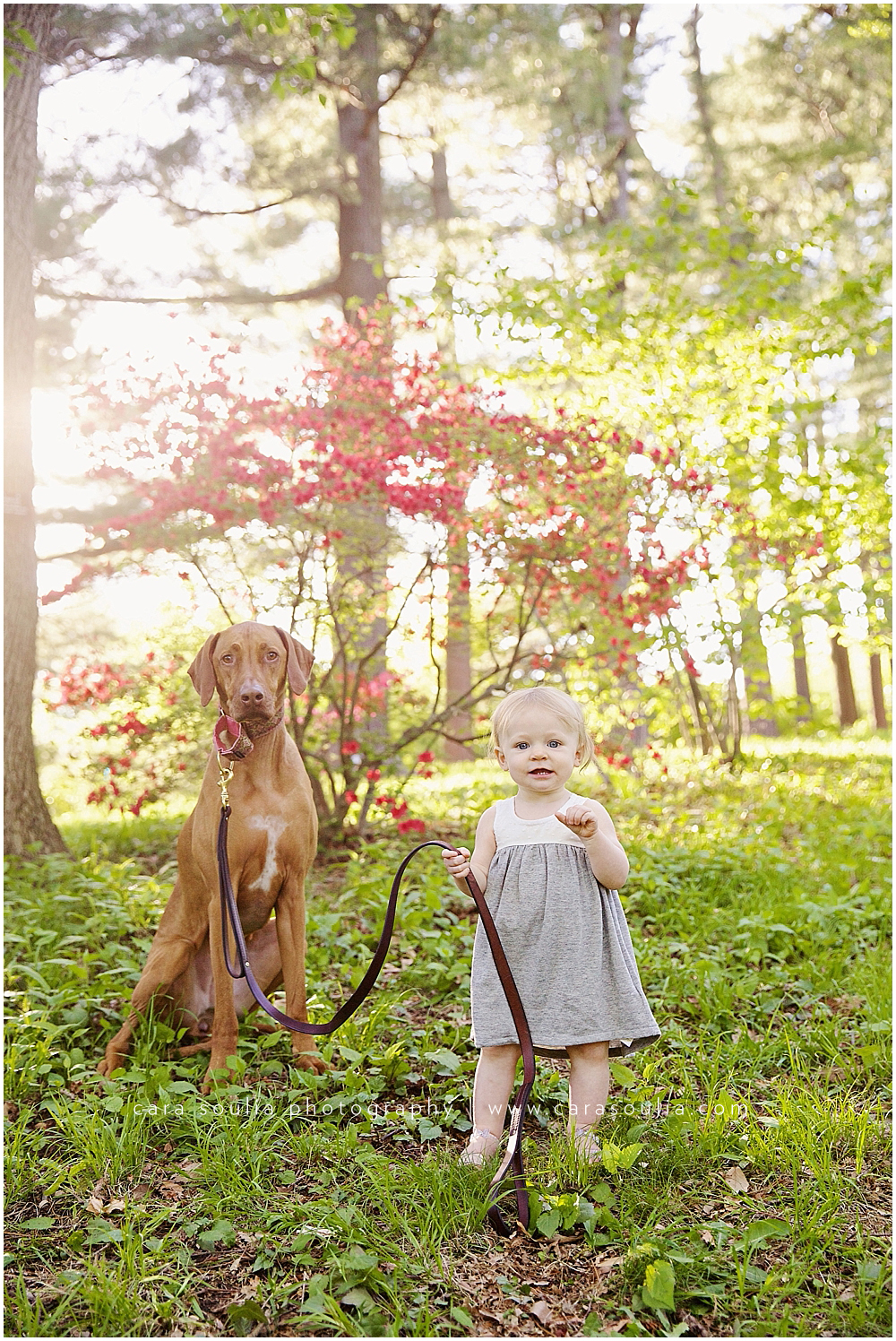 best childrens photographer with pets boston ma