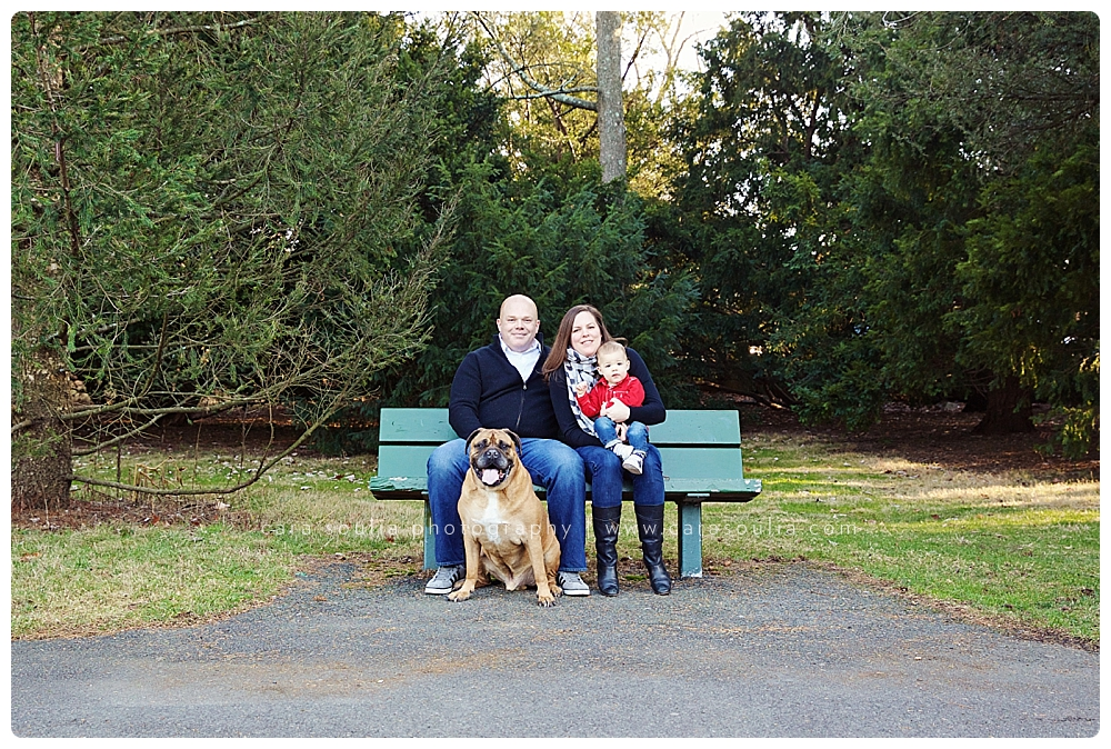 beautiful family photography boston