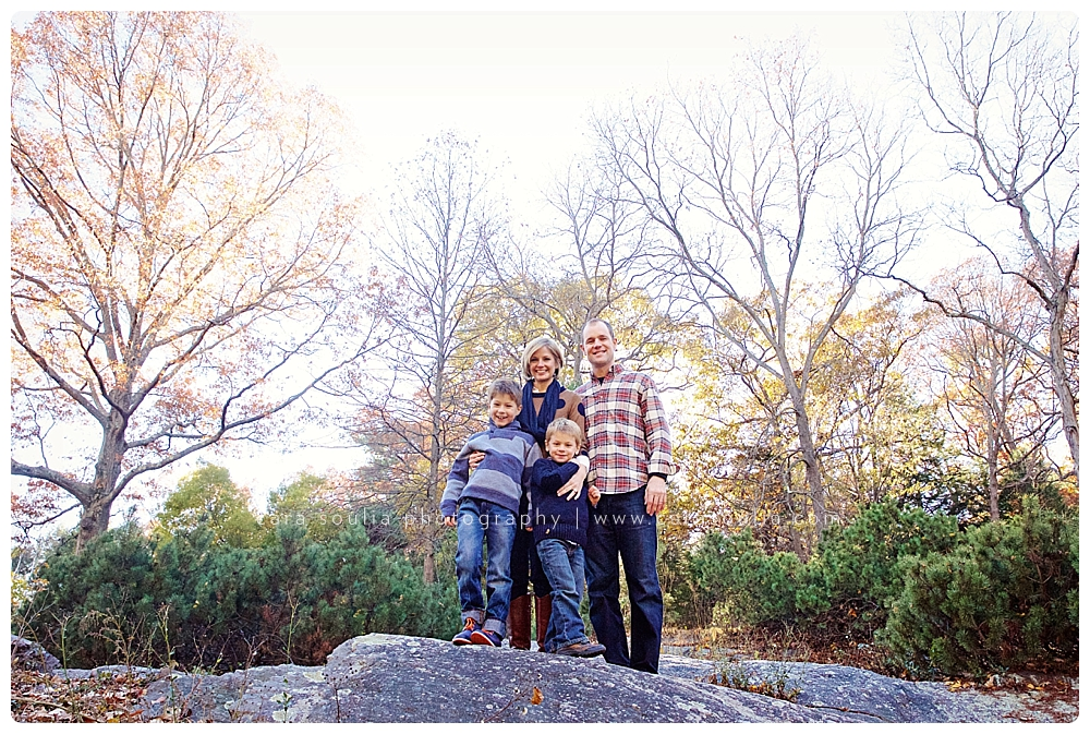 cool family photographer needham ma
