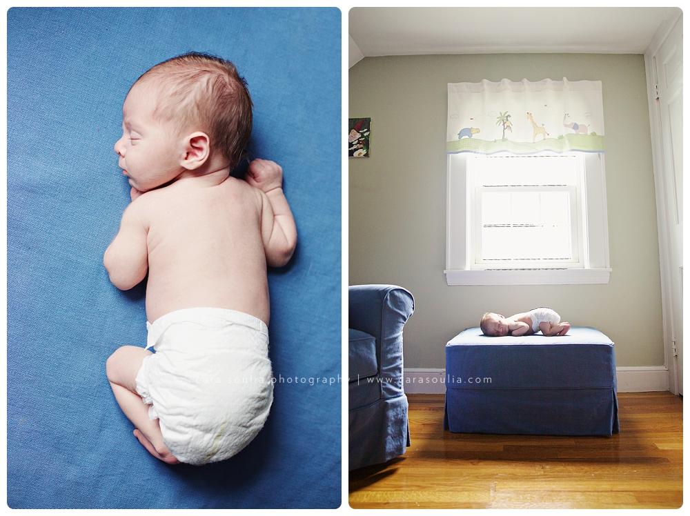 newborn portraits boston ma cara soulia