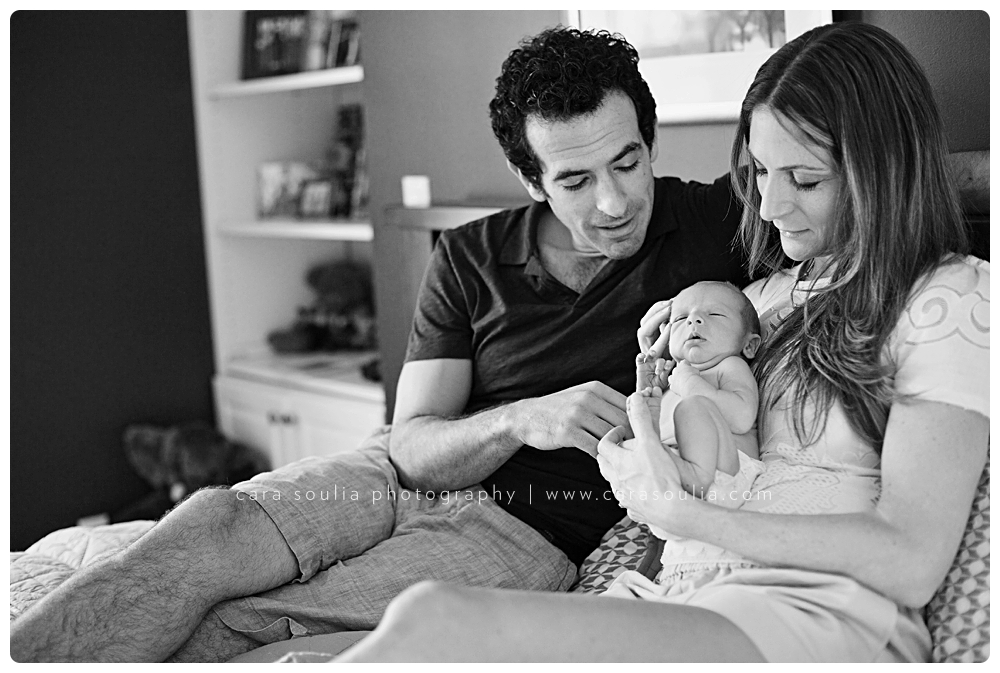 beautiful newborn photography boston ma cara soulia