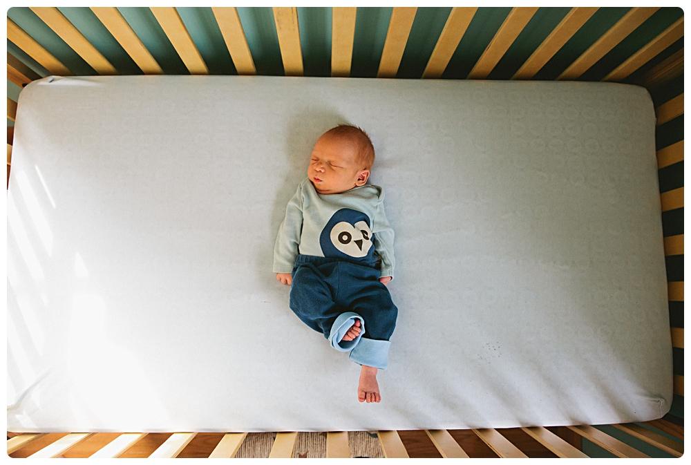 newborn portraits boston ma