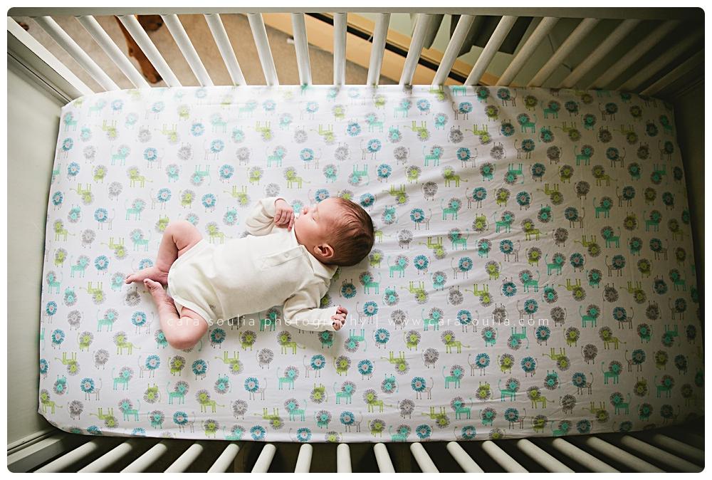 amazing newborn photographer massachusetts