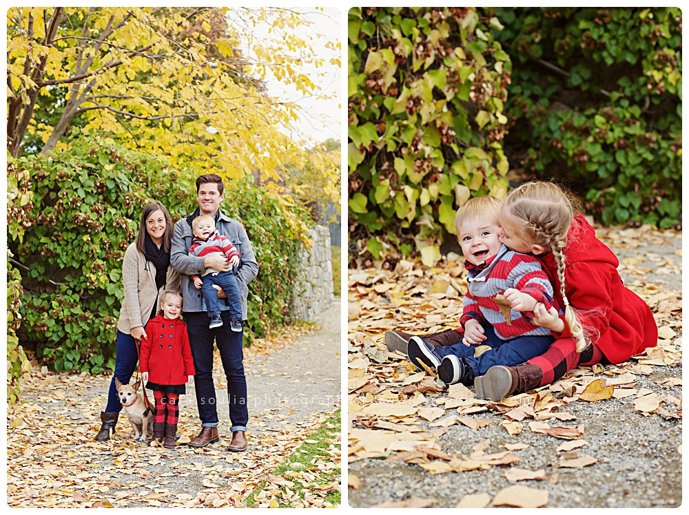 best fall family photo session brookline ma