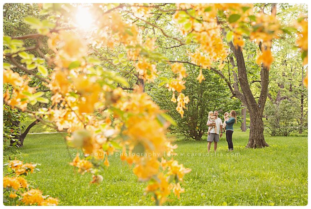 unique family portraits arnold arboretum cara soulia