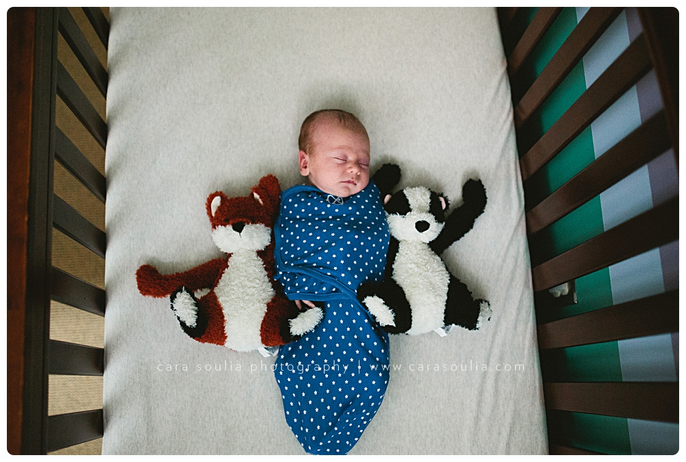 best-newborn-photographer-in-boston-ma