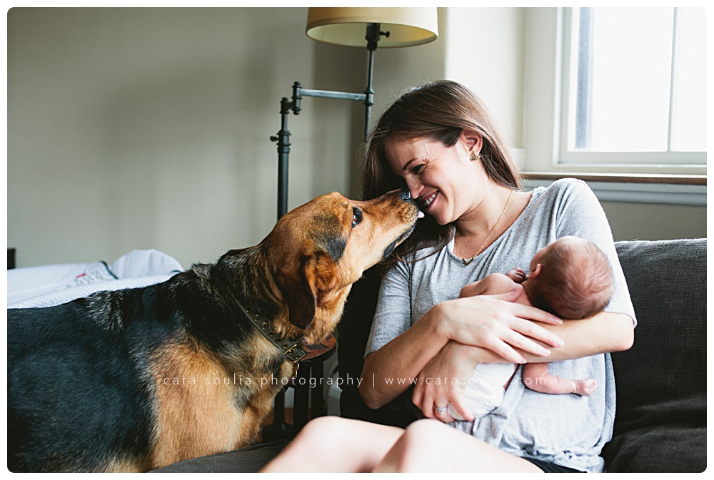 boston-baby-photographer-with-dog-massachusetts