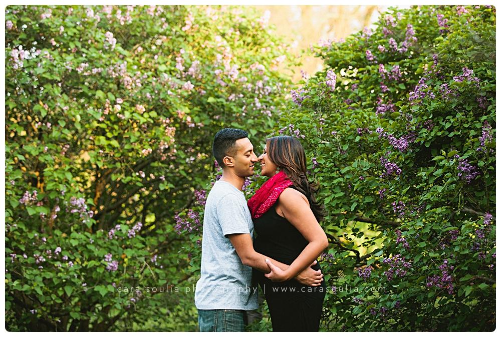 arnold arboretum maternity portraits cara soulia