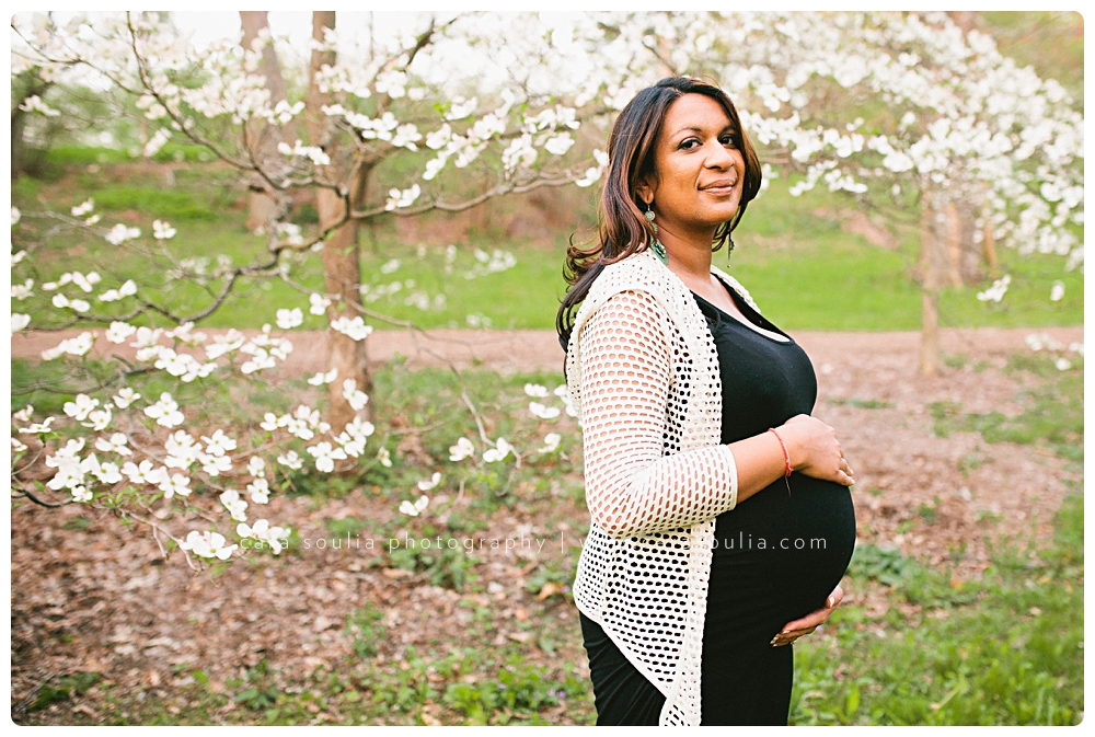 boston maternity portraits