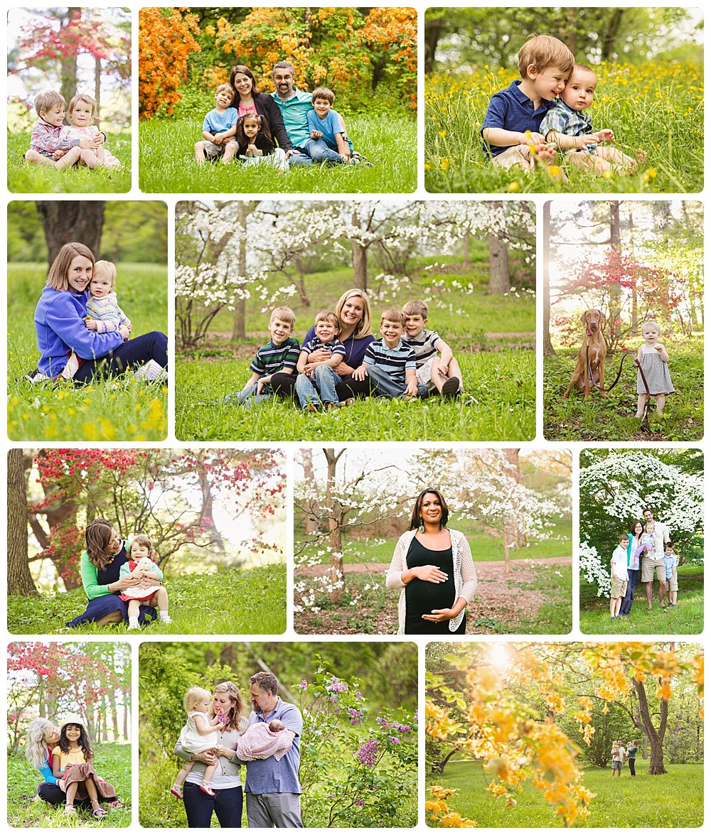 A college of family photo sessions in the springtime in Boston