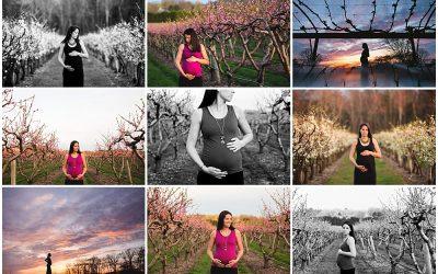 Orchard in Bloom | Needham Maternity Photographer