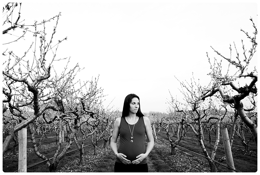 maternity photographer Wellesley