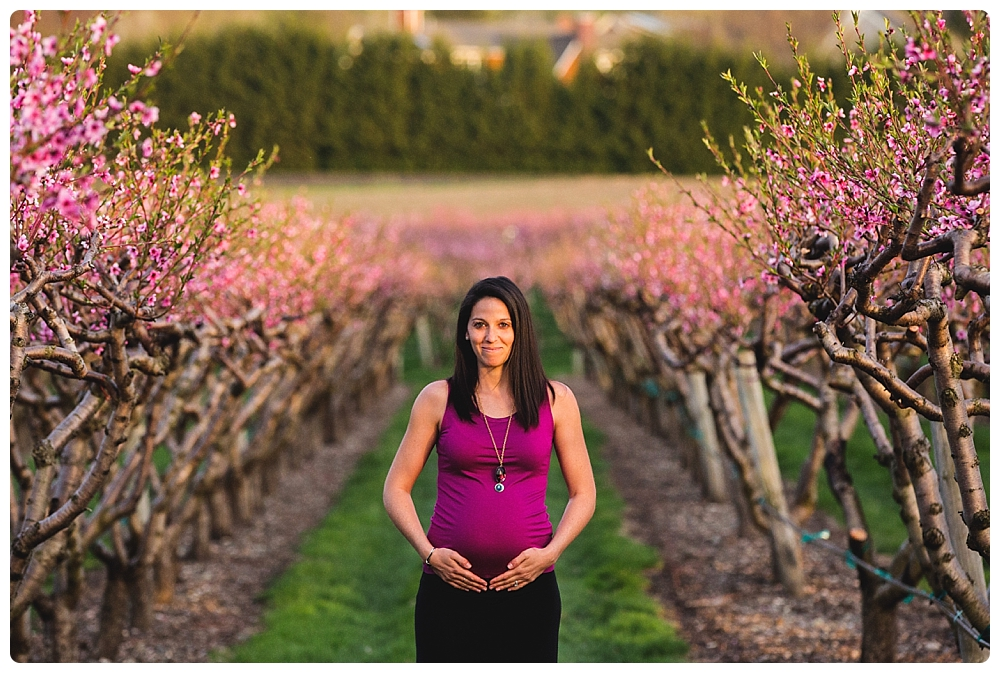 Maternity photographer Boston