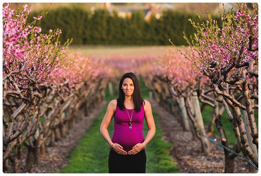 Maternity photographer Boston