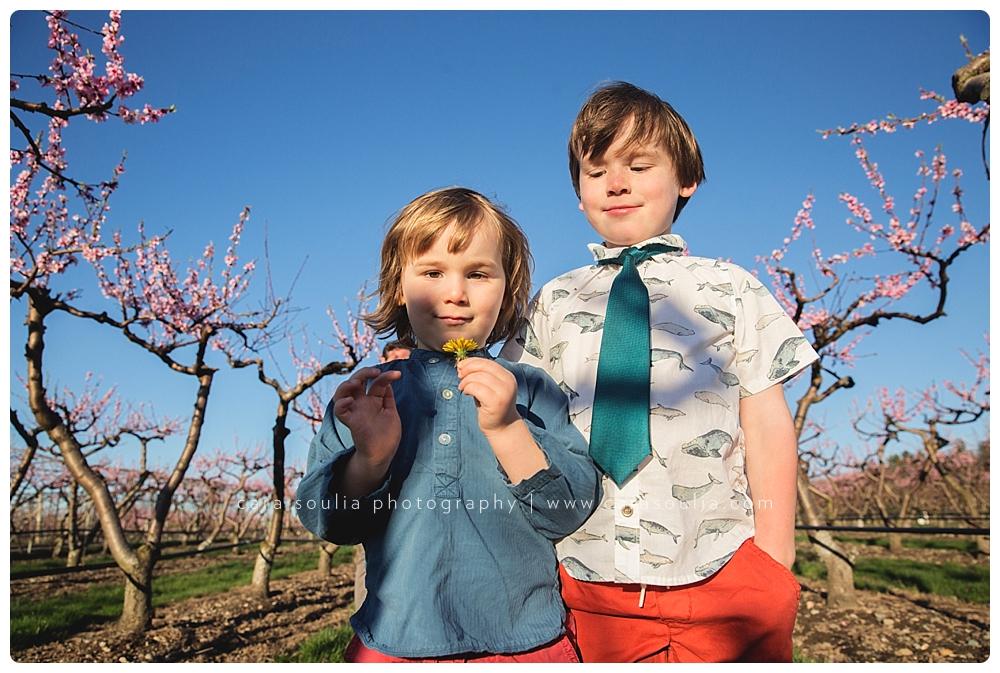 Wellesley Children's Photographer