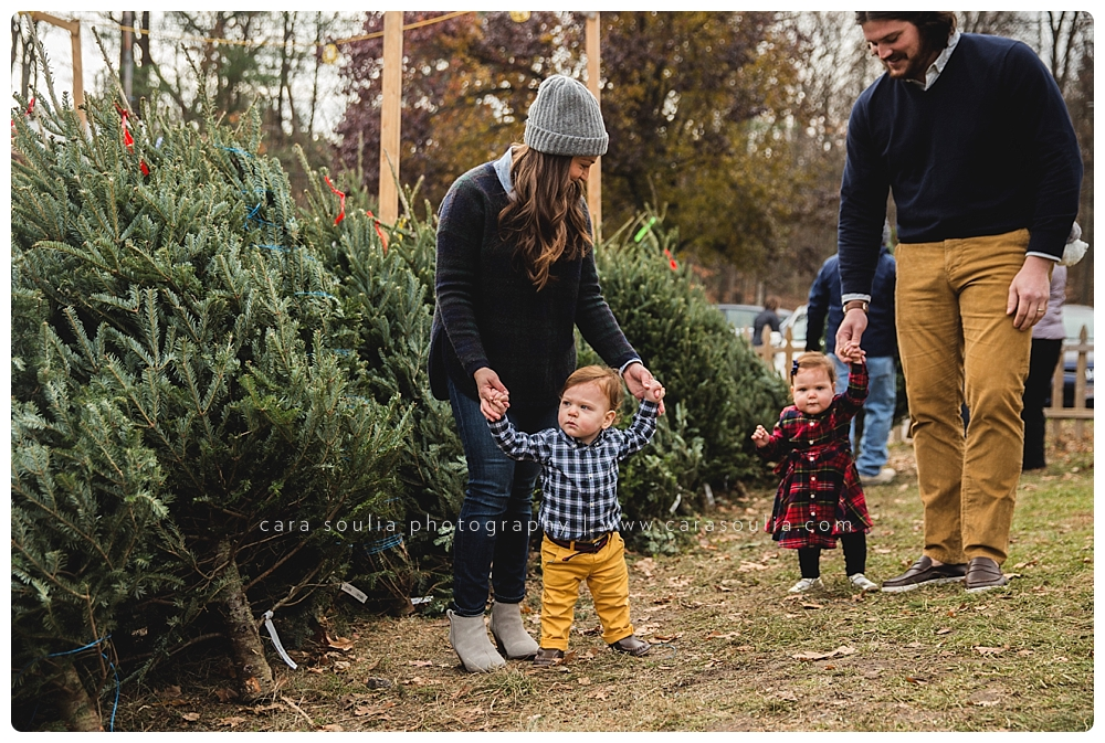 allandale farm family photo session