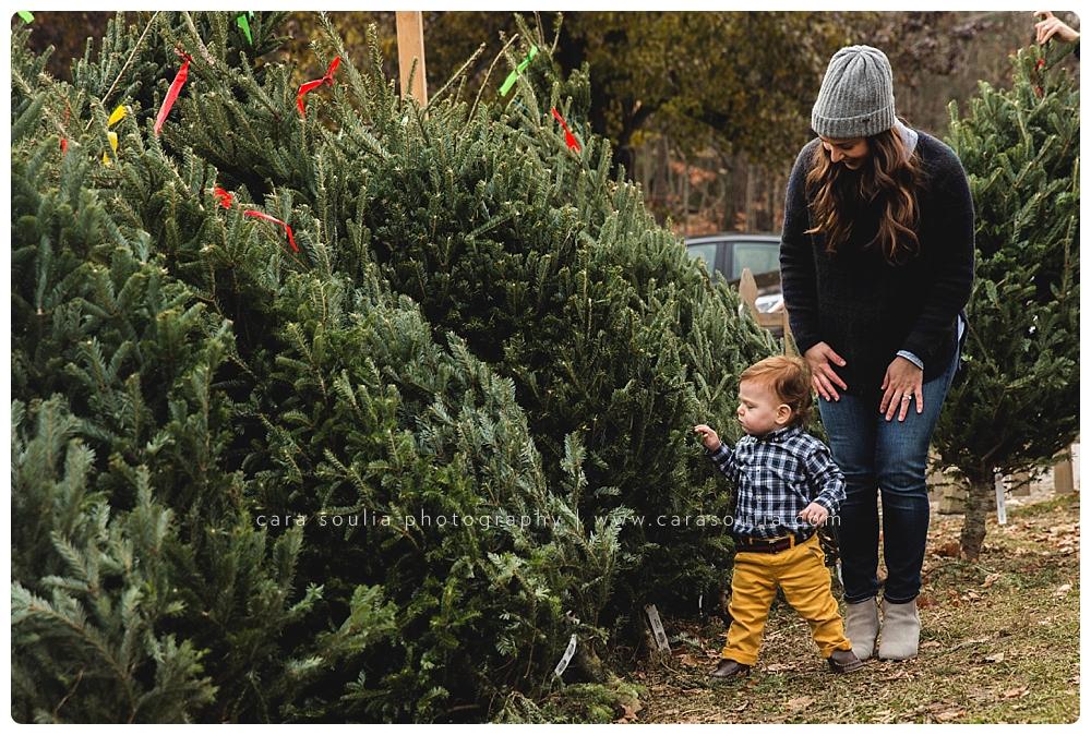 allandale farm family photos