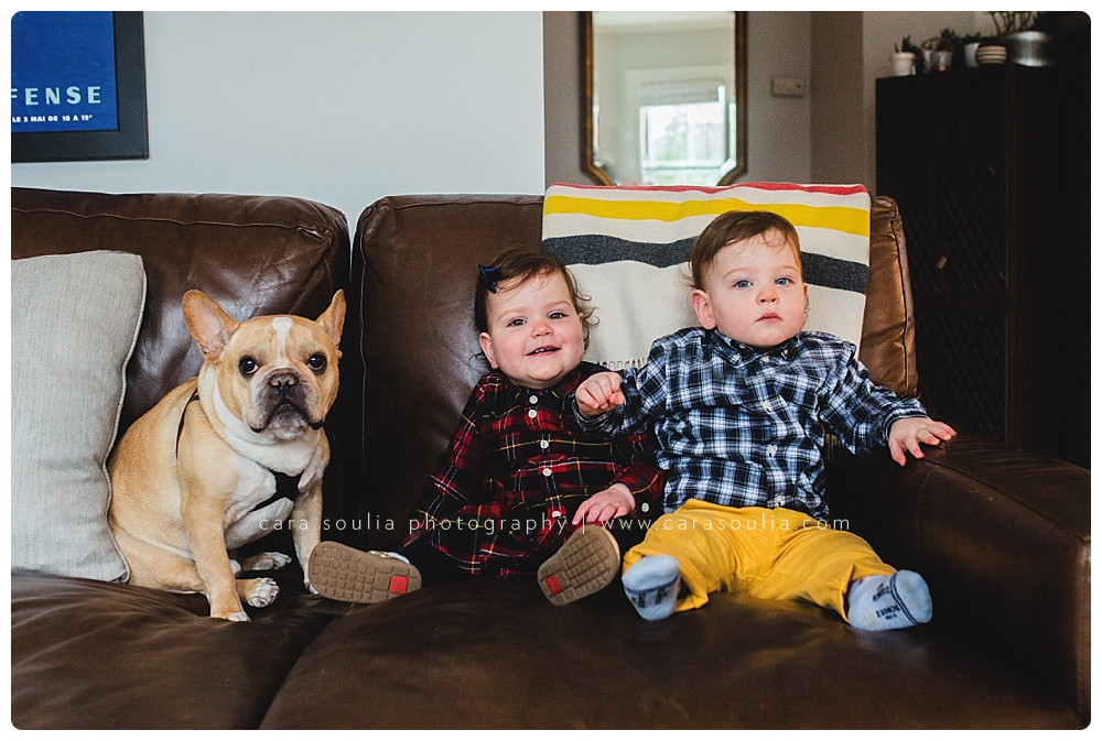 family photo session with pets boston mass