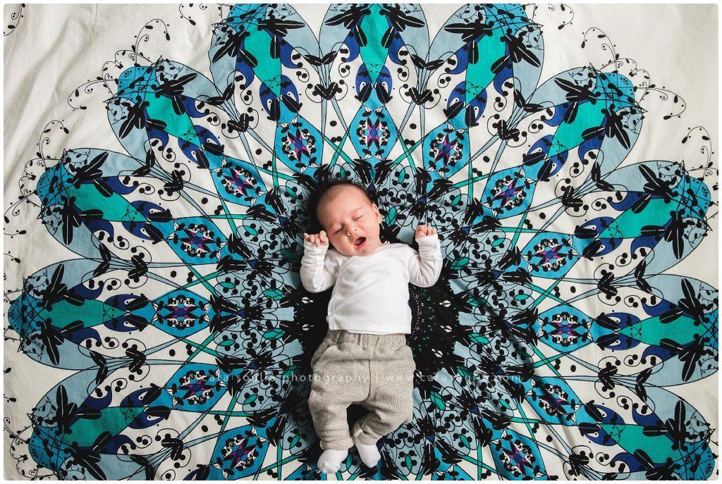 best baby photographer weston mass