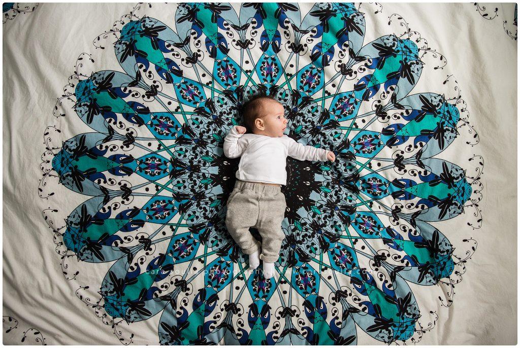 best newborn photographer weston massachusetts