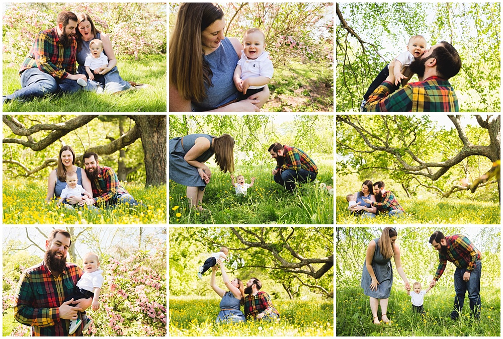 Spring in Bloom! | Arnold Arboretum Family Photo Session