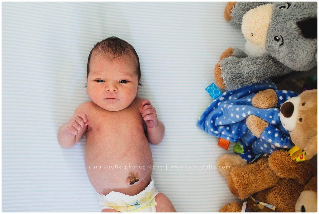 newborn photographer Wellesley, Needham, MA