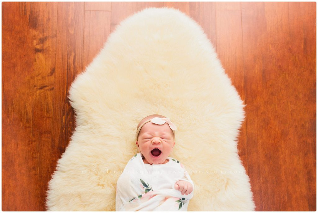 South Shore Massachusetts Newborn Session Cara Soulia Photography