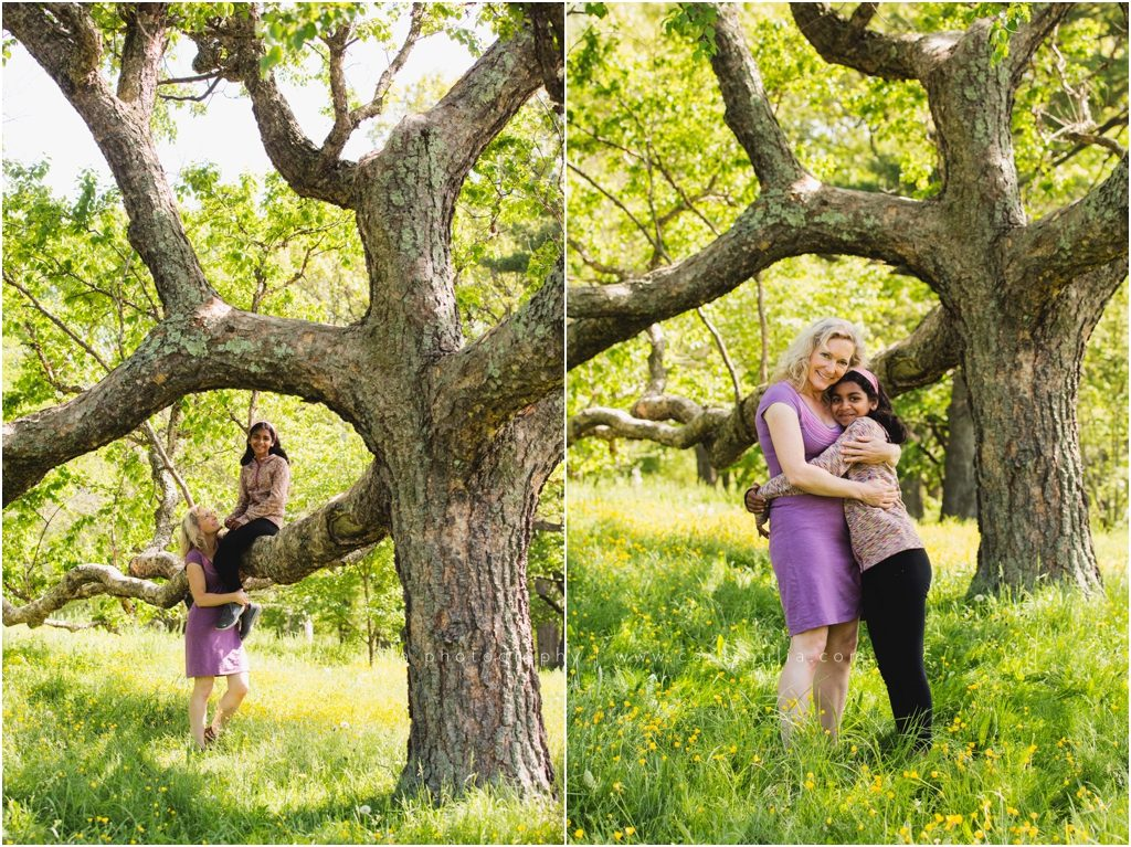 Arnold Arboretum Family Session Cara Soulia Photography