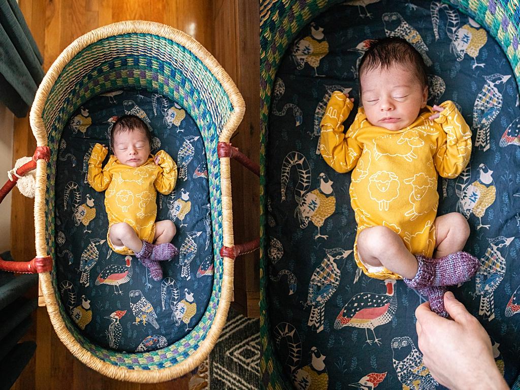 unique bassinette for newborn baby in boston