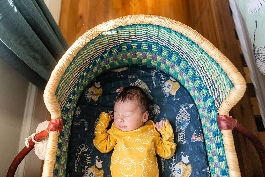 Newborn Baby Boy in Colorful unique Bassinet in boston